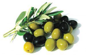 lợi ích từ quả oliu 2