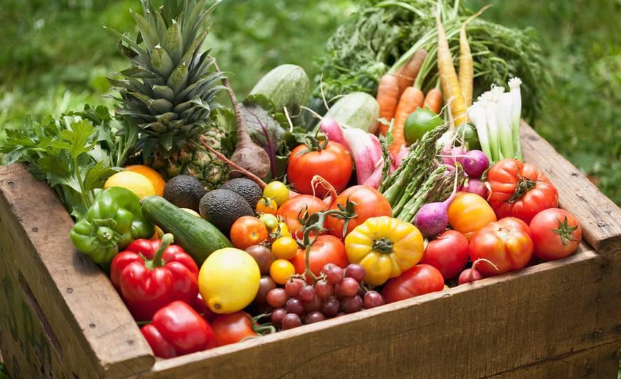 sản phẩm organic