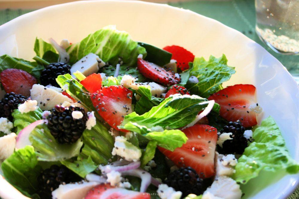 Món-salad-với-hạt-chia-1-chia-samne